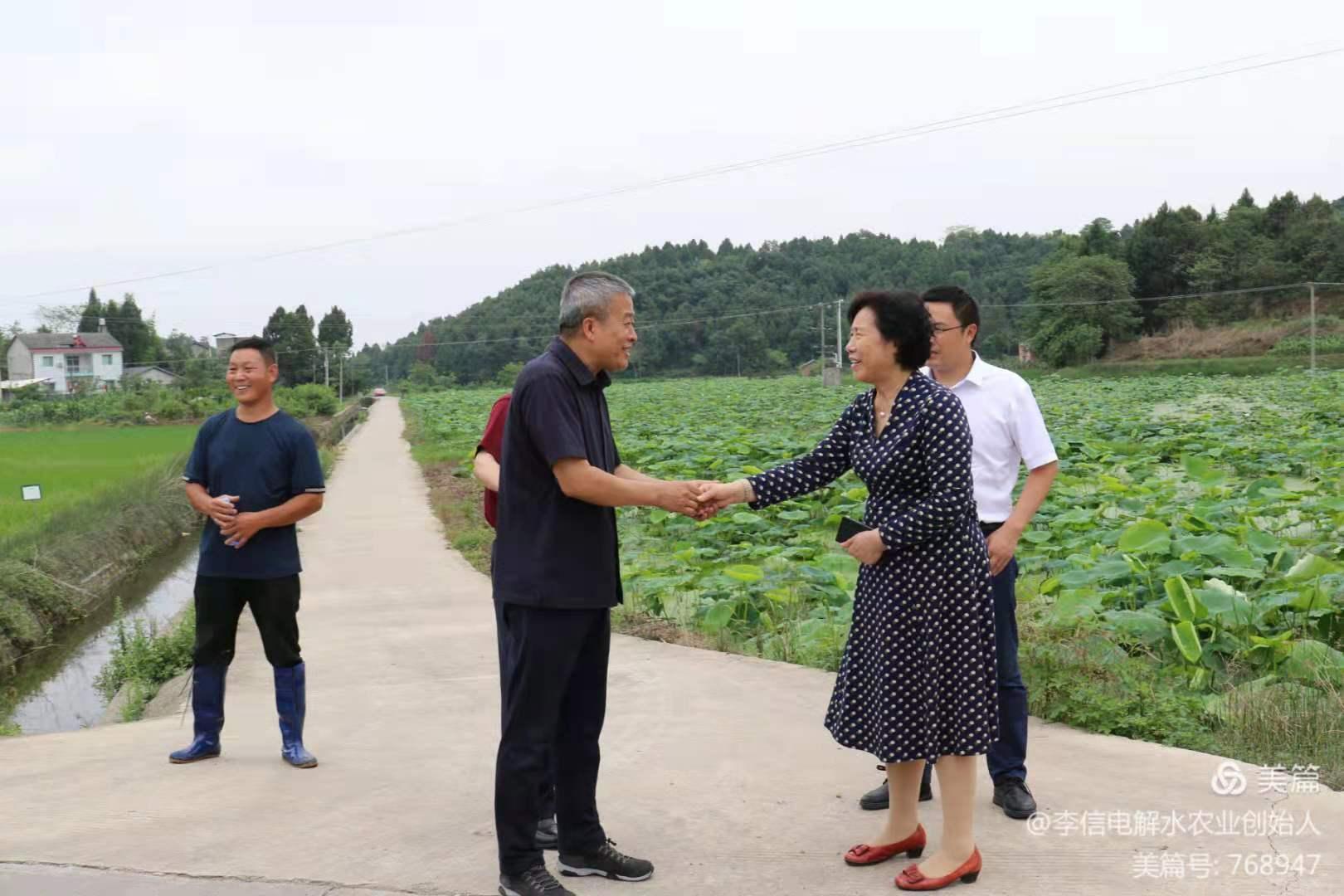 2021年6月18日,四川省原政协副主席、老科协领导和老专家到雄一电解水水稻种植基地考察调研