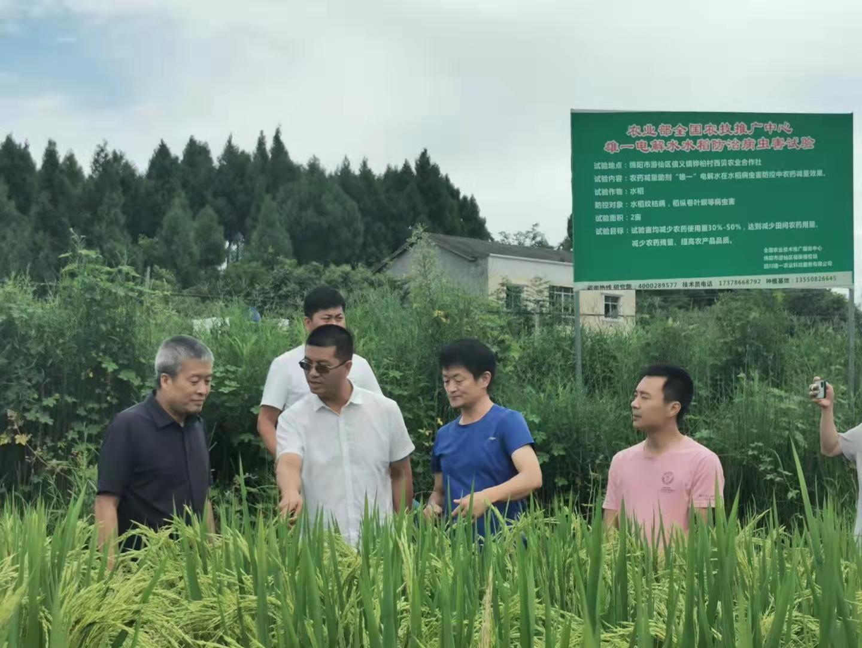 四川省农业农村厅相关领导一行考察调研雄一电解水种植基地